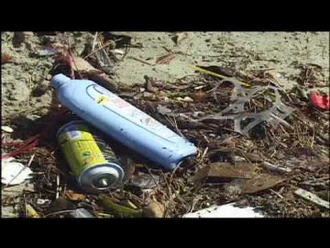 Plastics and Marine Debris