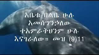 Ethiopian Gospel Song Instrumental Music Abet Meheret Yebezalet.wmv