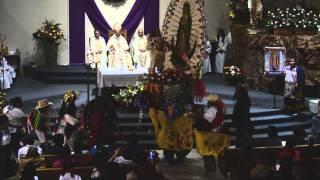 Fiesta de Guadalupe