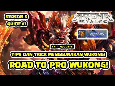 Tips dan Trick Pro Wukong Build & Gameplay! S3 Episode 1! - Arena of Valor