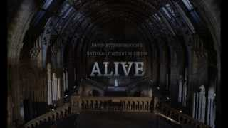 Nonton David Attenborough S Natural History Museum Alive Trailer Film Subtitle Indonesia Streaming Movie Download