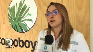 Corpoboyacá recibió certificación ICONTEC por reducción de GEI