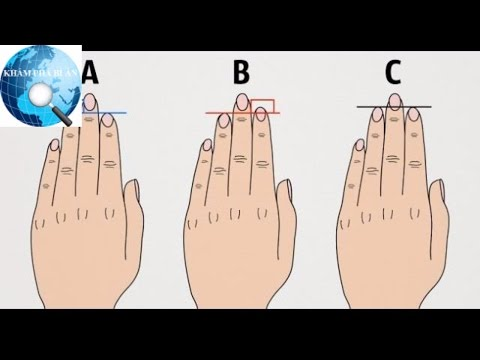 Chiều dài ngón tay có thể nói lên điều gì về tính cách bạn?