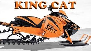 10. KING CAT M9000   KING CAT RETURNS   VLOG