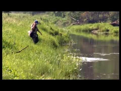 рыбалка на малых реках осенью видео