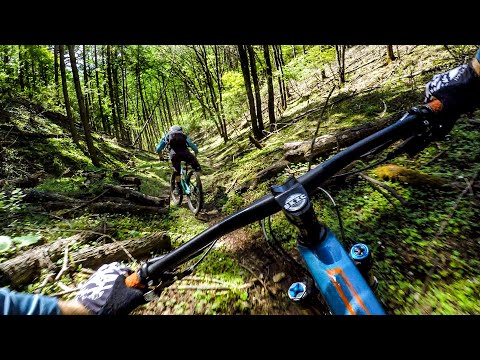 Without A Doubt, It's The Best Dirt In The World 🇯🇵 Mountain Biking Japan