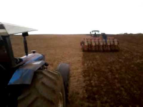 plantio capão alto milho 240 y