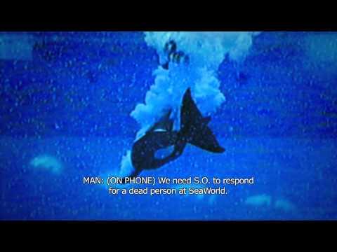 Blackfish - Trailer