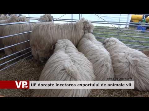 UE dorește încetarea exporturilor de animale vii