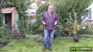 #1351 Herbstpflanzung - Wie pflanze ich einen Obstbaum im Herbst