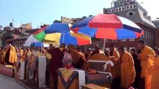 Video World Peace Puja..5th Annual Nyingma Monlam of Nepal,2014. HD MP3, 3GP, MP4, WEBM, AVI, FLV September 2018