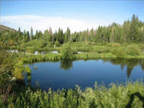Cozy Canyon Ranch - Recreational Ranch For Sale in Wyoming