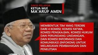 Video Rekaman Kesaksian Ketua MUI KH Ma'ruf Amin dalam Sidang Ahok MP3, 3GP, MP4, WEBM, AVI, FLV Mei 2019