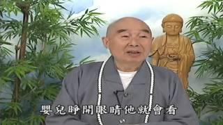 Thập Thiện Nghiệp Đạo Kinh (2001) tập 49 & 50 - Pháp Sư Tịnh Không