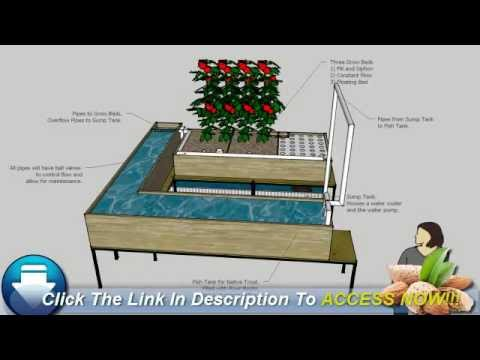 Sizing an Aquaponics System