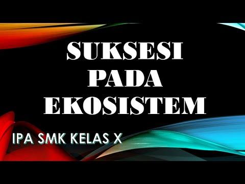 Suksesi Pada Ekosistem - Suksesi Primer dan Suksesi Sekunder IPA SMK Kelas X