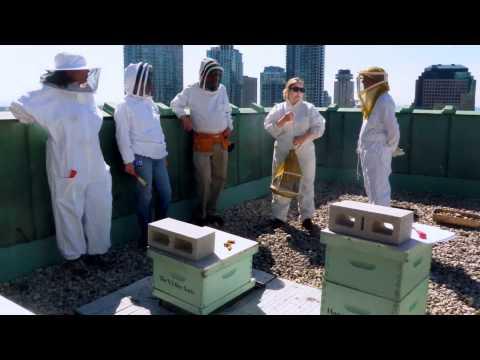 Local Food - 2012 Green Toronto Awards video