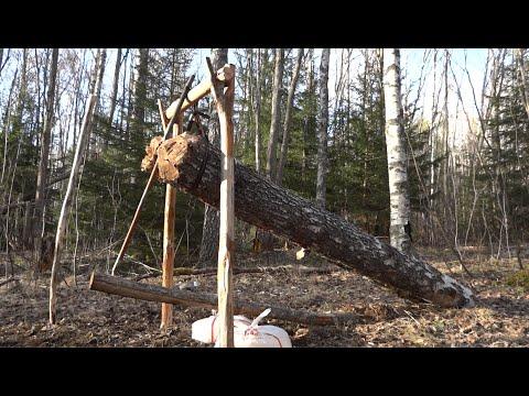 男子運用木頭製造狩獵陷阱 殺傷力卻意外強大!