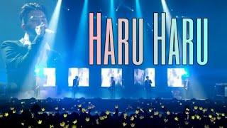 Nonton Haru Haru Live  Seoul Film Subtitle Indonesia Streaming Movie Download