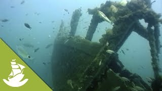 The strong currents of the Australian shores made it very difficult for conquerors to reach the land through time, resulting in multiple shipwrecks that now decorate the bottom of the sea and serve as a home to the wildlife. SUBSCRIBE and discover shocking scenes and the most amazing videos: http://goo.gl/fC5pjCFollow us in:Facebook: https://www.facebook.com/NewAtlantisD...Twitter: https://twitter.com/NewAtlantisDocu