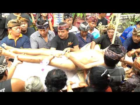 Video Balinese Ngaben Ceremony - Bathing the Corpse download in MP3, 3GP, MP4, WEBM, AVI, FLV January 2017
