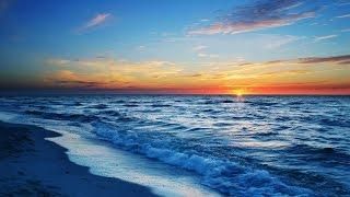Black Desert. Как заработать в океане.