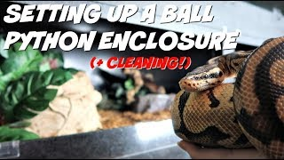 BALL (ROYAL) PYTHON ENCLOSURE TOUR / SET UP / CLEANING! | Trouser's Cage by Maddie Smith