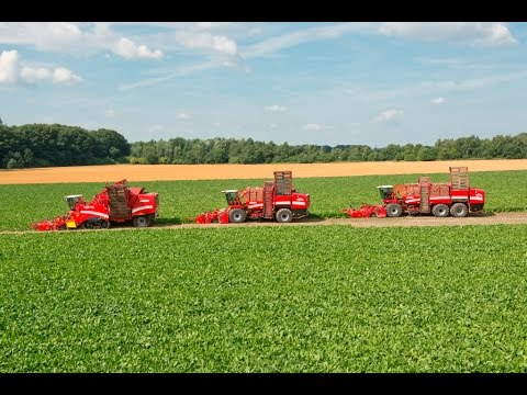 Grimme beet technology