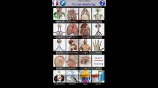 Visual Anatomy YouTube video