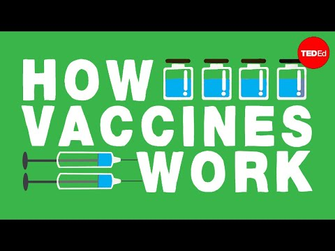 How do vaccines work? – Kelwalin Dhanasarnsombut