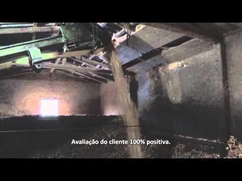 Picador de Madeira PTL 240/320 x 600 Rolo Tracionador - Lippel