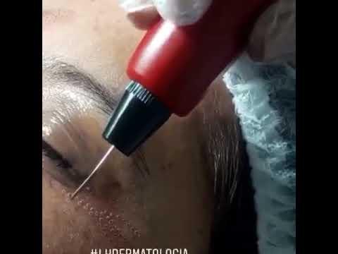 Laura Sofia Habib Araujo  Dermatólogo