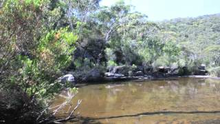 Heathcote Australia  City new picture : Heathcote National Park, Sydney Australia.