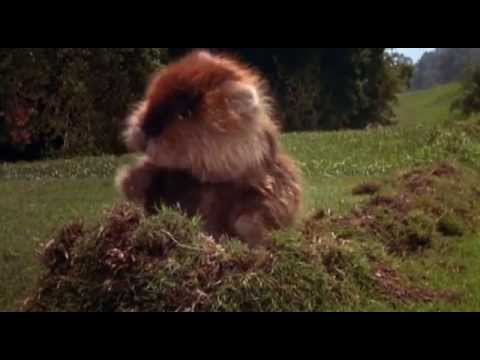 """I'm Alright"" Kenny Loggins ""Caddyshack Theme"" (SPOILERS!)"