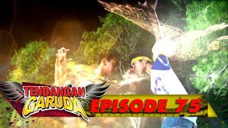 Video Macan vs Rajawali, Duel Sengit Rio dan Arnold siapa yang bakal menang ya? - Tendangan Garuda Eps 75 MP3, 3GP, MP4, WEBM, AVI, FLV September 2018