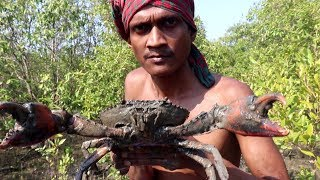 Video Biggest Crab Hunting and Eating / River Crab big size in INDIA MP3, 3GP, MP4, WEBM, AVI, FLV April 2019
