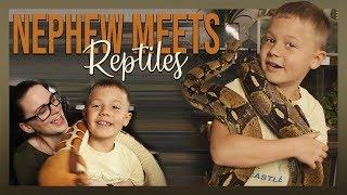 NEPHEW MEETS REPTILES (Big snake, Savannah monitor) by Jossers Jungle