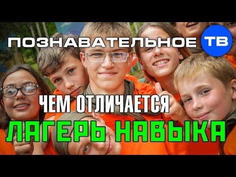 Чем отличается Лагерь Навыка (Познавательное ТВ Артём Войтенков) - DomaVideo.Ru