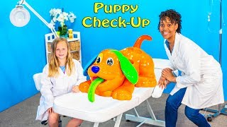 Video Assistant Plays with Play Doh Dog Check Up Doctor Video download in MP3, 3GP, MP4, WEBM, AVI, FLV January 2017
