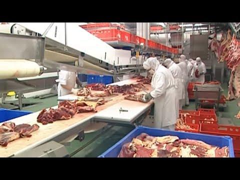 EuGH-Urteil: Halal-Fleisch darf kein Biosiegel tragen