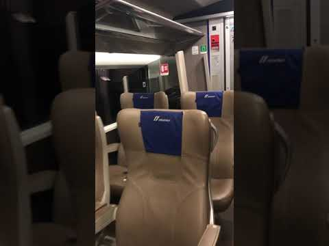 Train from Florence to Rome (. Only me and my daughter first class )