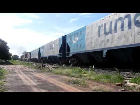 EFA - Trem em Meridiano