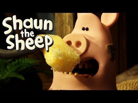 Dodgy Lodger - Shaun the Sheep (Series 5)