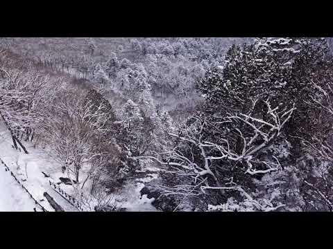 湯滝(滝上)の空撮動画