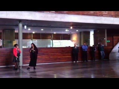 Video La habanera de Carmen, en la Vasconcelos (flash mob) download in MP3, 3GP, MP4, WEBM, AVI, FLV January 2017
