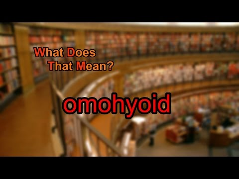 What does omohyoid mean?