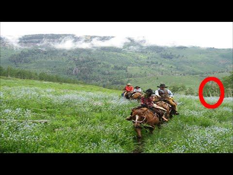 Horseback campers terrified by Bigfoot in Georgia - BCS