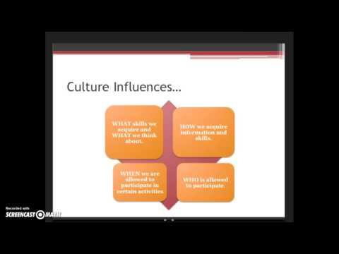 Cultural Lens Overview