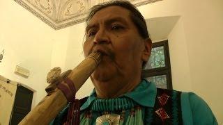 Nonton Yellowbird In Concerto   Aula Consigliare Film Subtitle Indonesia Streaming Movie Download