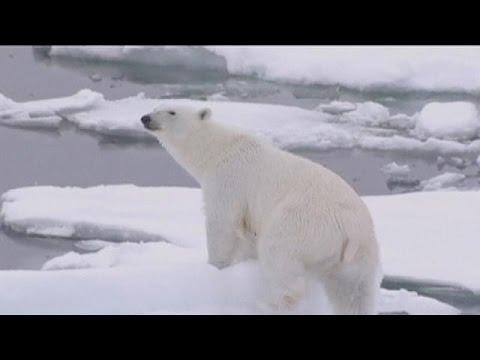 Ρεκόρ αύξησης θερμοκρασίας του πλανήτη κατεγράφη το 2015